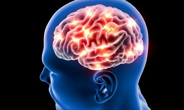 Polacy opisali nowy szlak chemiczny prowadzący ku tajnikom pamięci i depresji