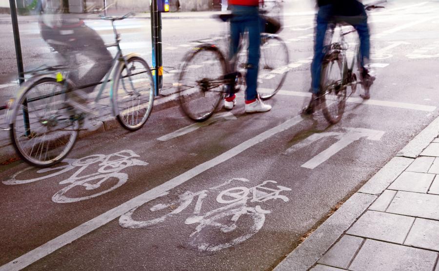 Rowerzyści na ścieżce
