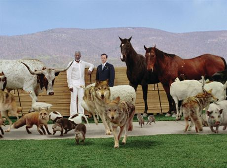 God (MORGAN FREEMAN) and pairs of his creatures flank Evan Baxter (STEVE CARELL) in a comedy of biblical proportions, ?Evan Almighty?. EVAN WSZECHMOGACY *** Local Caption *** EVAN WSZECHMOGACY