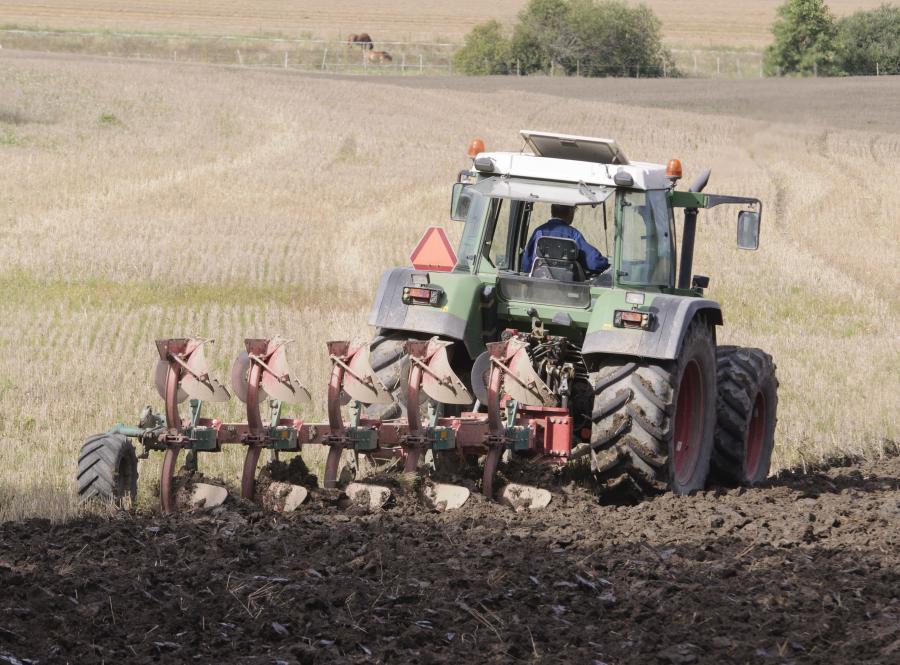 Drogie euro sprzyja rolnikom