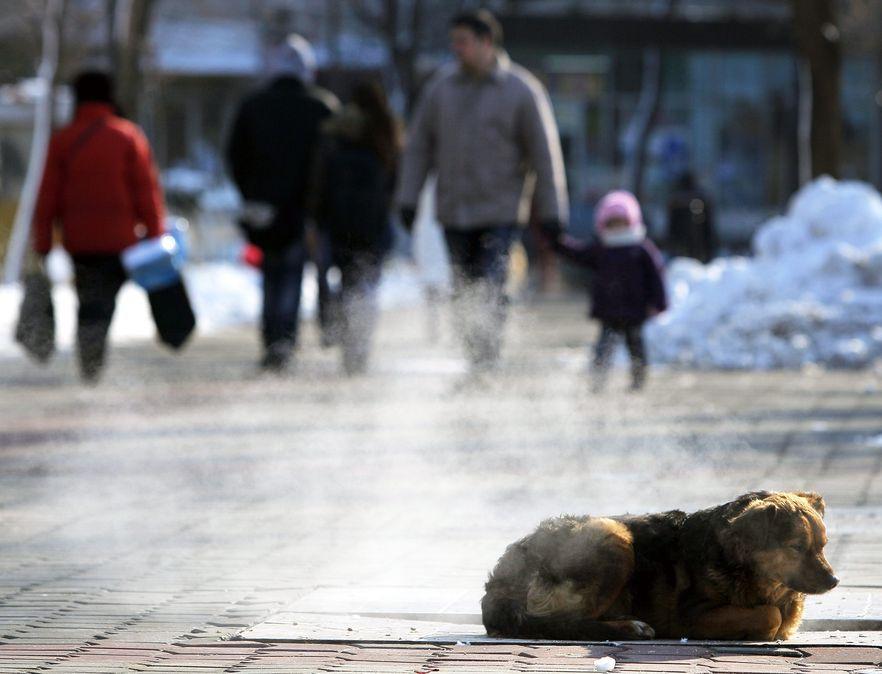Rekordowo niskie temperatury w Polsce