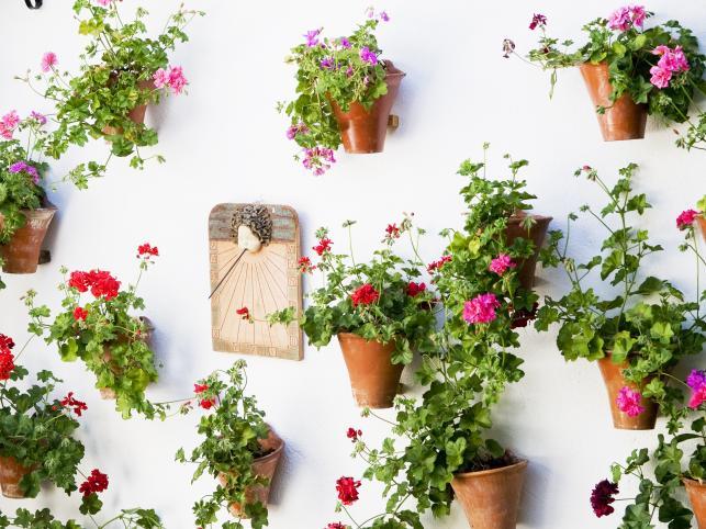 Kwiatowe patia w Kordobie