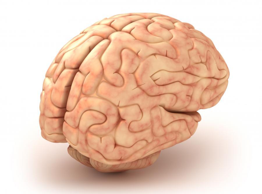 7. MIT: Gry poprawiają pamięć i zdolności rozumowania