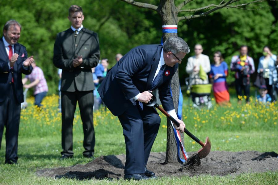 Prezydent Bronisław Komorowski zasadził \