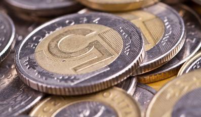 złoty złotówki monety bilon pieniądze