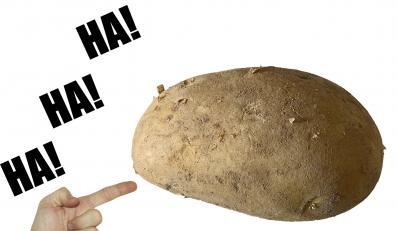 Prawo zakaże upokarzać kartofla
