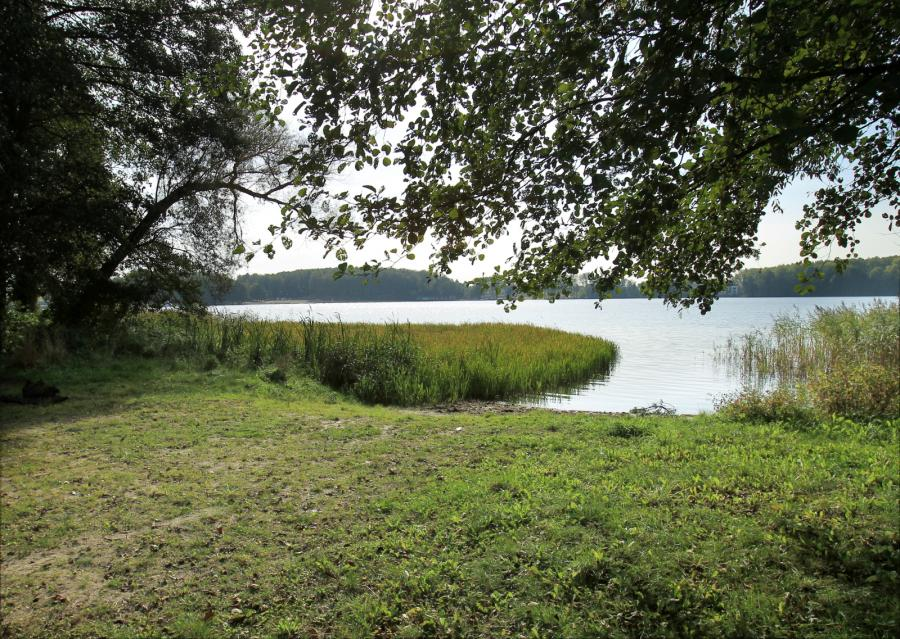 Działka nad jeziorem Ukiel
