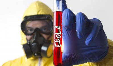Wirus eboli