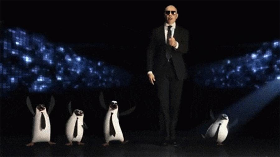 Pitbull i pingwiny jak... bracia