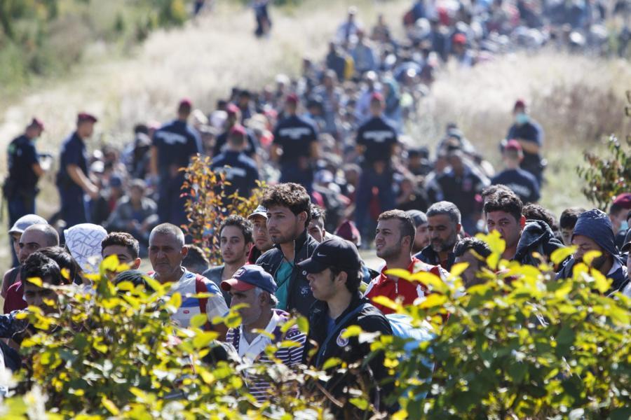Imigranci na granicy chorwacko-węgierskiej