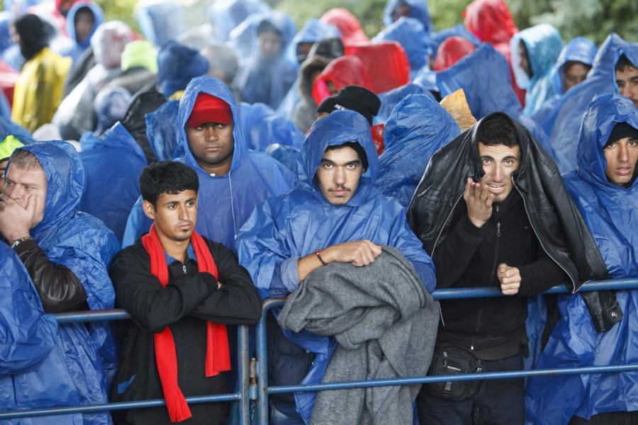 Imigranci na granicy chorwacko-słoweńskiej