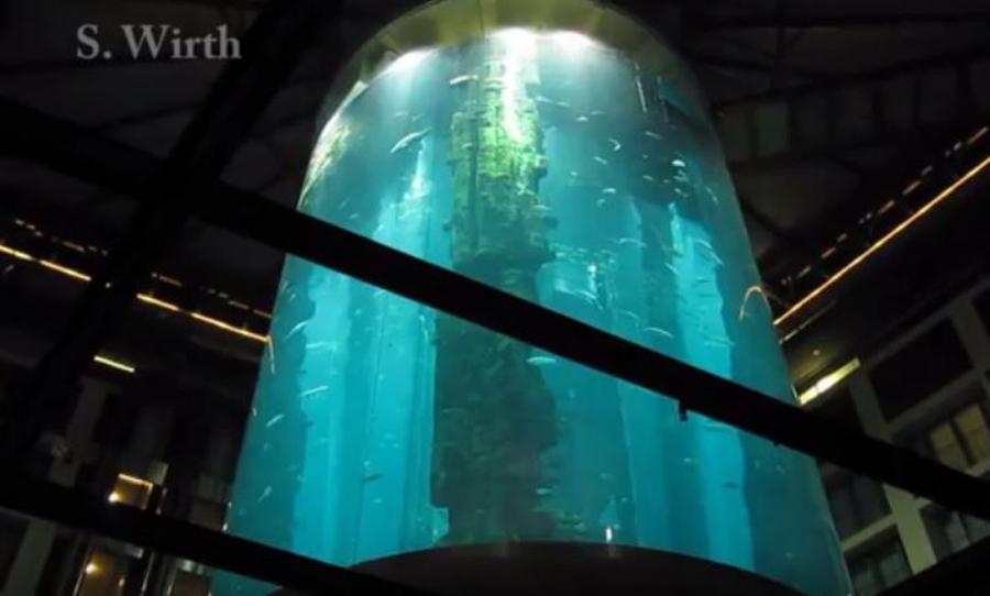 Berlin z dzieckiem - SeaLife & AquaDom