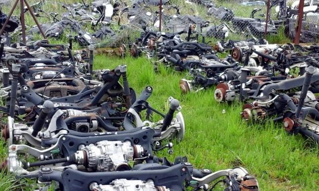 Kradzione auta warte 16 mln zł w dziuplach jak hurtownie! Mamy zdjęcia z akcji policji i straży granicznej